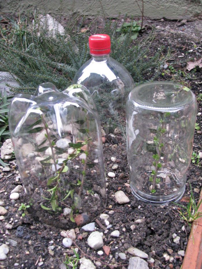 Staklenke i plastične boce