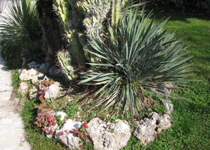 kamenjar u vrtu