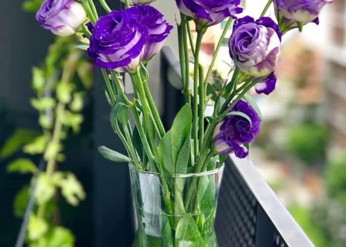 cvijeće u vazi