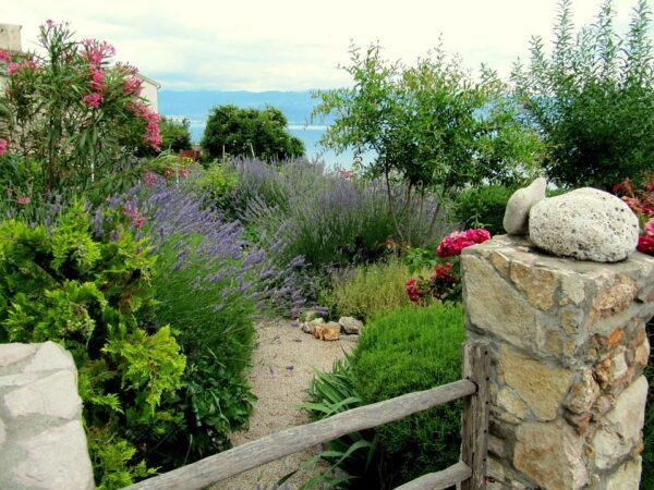 mediteranski vrt s lavandom