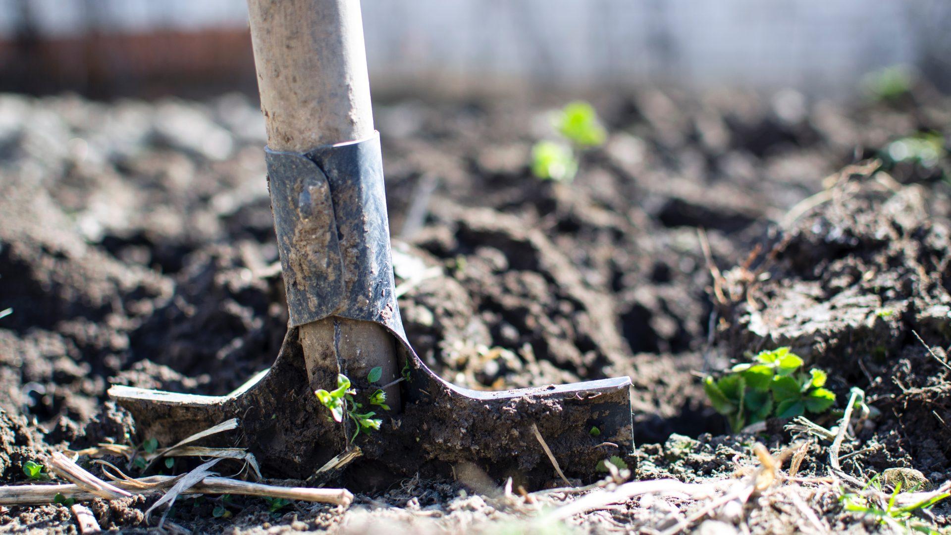 vrtno tlo